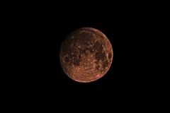 NIR1000-8198 Super Snow Moon February 18 2019