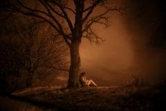 NIR1000-9135 Tree Reading